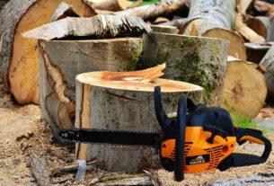 Waldarbeiten mit einer Kettensäge