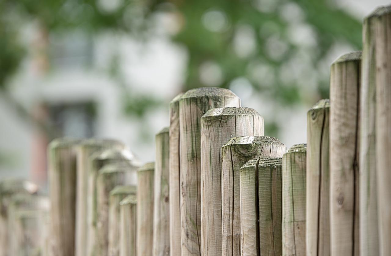 Tolle Ideen Fur Zaun Und Sichtschutz Garten Haus